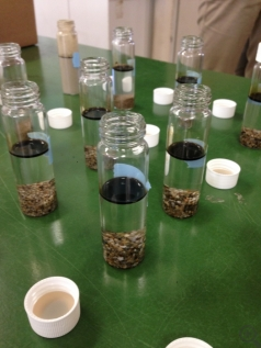 Oil experiment performed by local High School student using different types of sediment